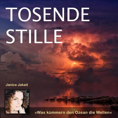 Tosende Stille - Der Podcast vom Heidelberger Heiligenberg