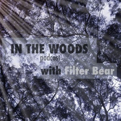 In The Woods with Filter Bear