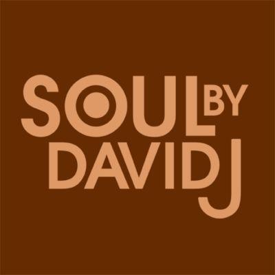 Soul By David J