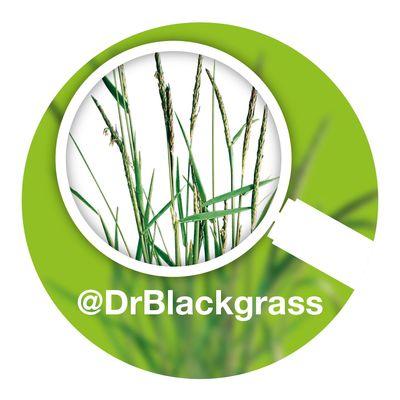 Dr Blackgrass on air