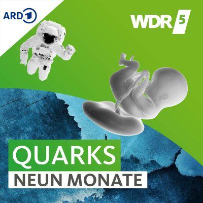 WDR 5 Quarks – Neun Monate