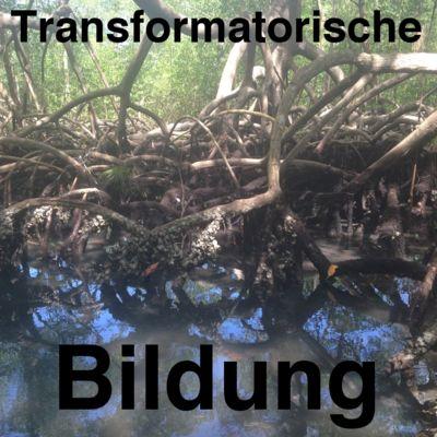 Transformatorische Bildung
