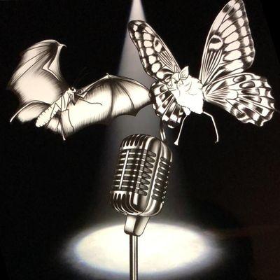 SchmaflCast - Schmettermaus und Flederling