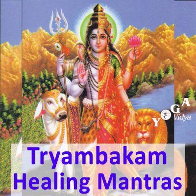 Om Tryambakam Healing Mantra