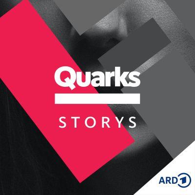 Quarks Storys