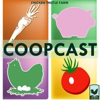Chicken Thistle Farm CoopCast
