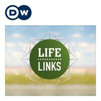 Life Links: Compartir realidades. Cambiar perspectivas.