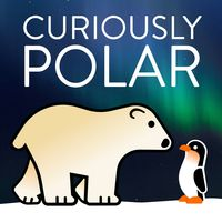 Curiously Polar