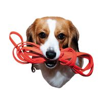 Der Podcast für alle Hundefreunde