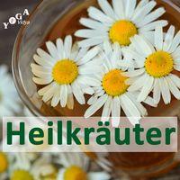 Heilkräuter und Heilpflanzen – Pflanzenheilkunde