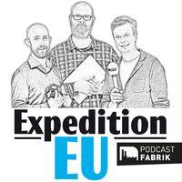 Expedition EU - Der Euranet Plus Podcast zur Europawahl