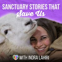 Sanctuary Stories That Save Us