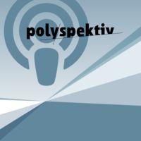 Polyspektiven -Methoden und Erfahrungen aus der politischen Bildung.