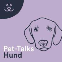 Pet-Talks: Hund – der Ratgeber-Podcast von DeineTierwelt