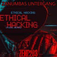 ZENO203 • ZANUMBAS UNTERGANG