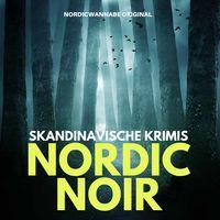 NORDIC NOIR - Skandinavische Krimis