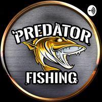 Predator Fishing   Raubfischangeln leicht gemacht