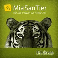 Mia san Tier - Der Zoo-Podcast aus Hellabrunn