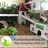 Kaninchenwiese.de Dein Kaninchen-Podcast