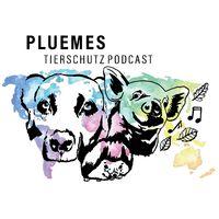 PLUEMES Dein Tierschutz Podcast