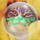 re:publica 18 - Alle Sessions