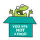 You Are Not A Frog